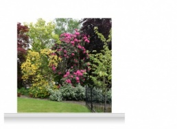 2-Drop Scenic Mural - Sussex Garden (240cm)